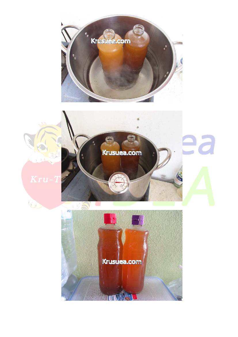 004 Pineapple Vinegar Page 3